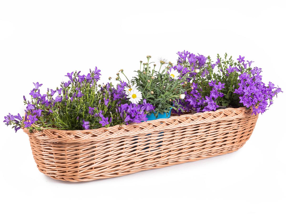 Blumenkasten Aus Weide Für Balkon Roses I Jiprode
